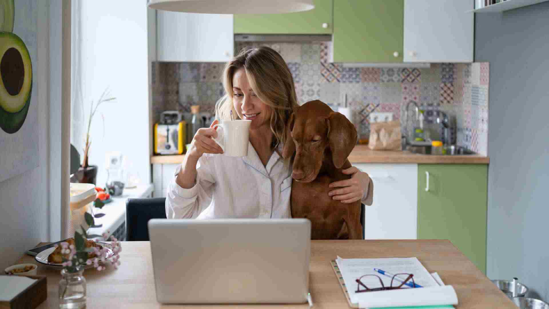 Pet-friendly problems for landlords, owners and strata managers